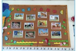 幼儿园的主题墙有什么类型呢?