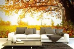 秋季装修二手房有哪些误区 装修实例现场说法